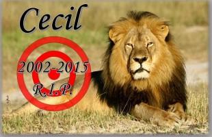 CecilRIP